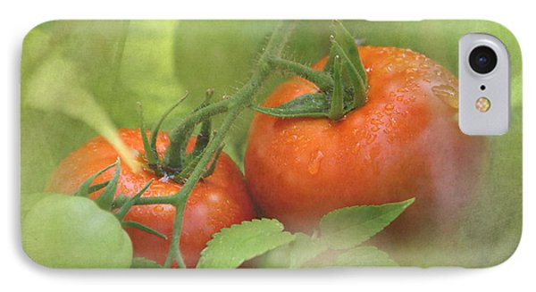 Vine Ripened Tomatoes IPhone Case by Angie Vogel