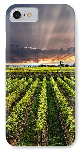 Vineyard At Sunset IPhone 7 Case by Elena Elisseeva