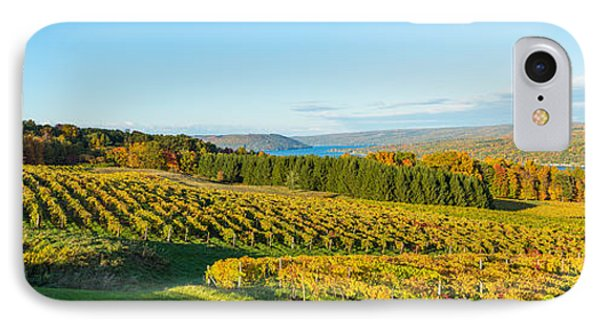Vineyard, Keuka Lake, Finger Lakes, New IPhone Case by Panoramic Images