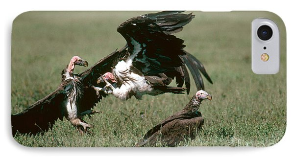 Vulture Fight IPhone Case by Gregory G. Dimijian, M.D.