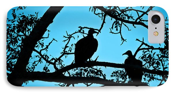 Vultures IPhone Case by Delphimages Photo Creations