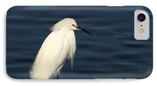 Wading And Watching IPhone Case by Sabrina L Ryan
