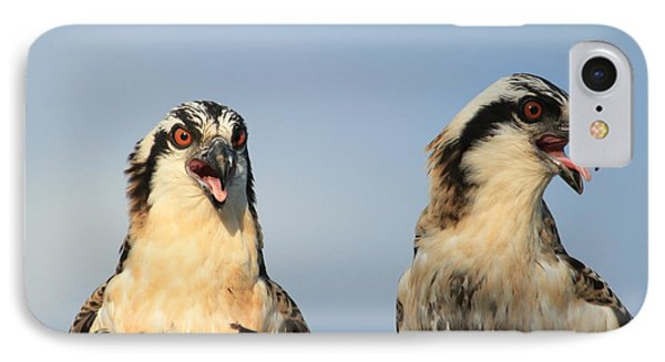 Waiting To Fly Phone Case by Geraldine DeBoer