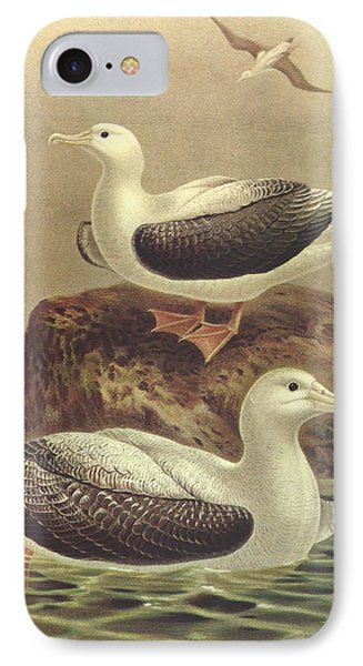 Wandering Albatross IPhone 7 Case by J G Keulemans