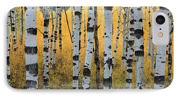Wasatch Aspens IPhone Case by Johnny Adolphson