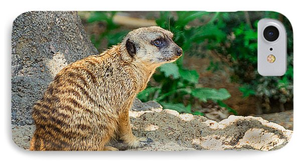 Watchful Meerkat IPhone 7 Case by Jon Woodhams