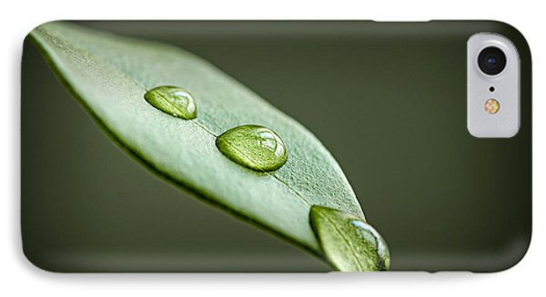 Water Drops On Green Leaf IPhone Case by Elena Elisseeva