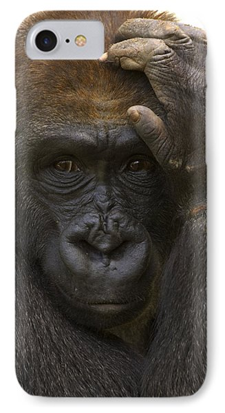 Western Lowland Gorilla With Hand IPhone 7 Case by San Diego Zoo