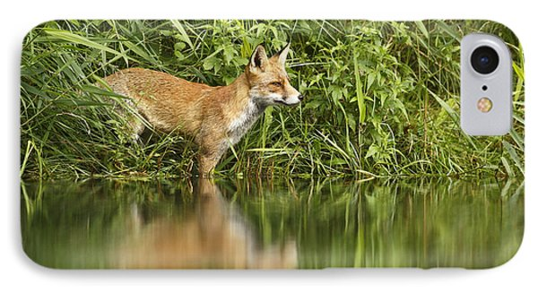 What Does The Fox See IPhone Case by Roeselien Raimond