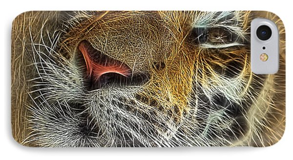 Whiskers Of The Tiger IPhone Case by Kaye Menner
