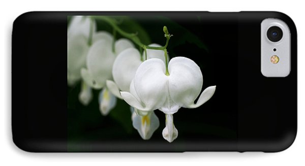White Bleeding Hearts IPhone Case by Rona Black