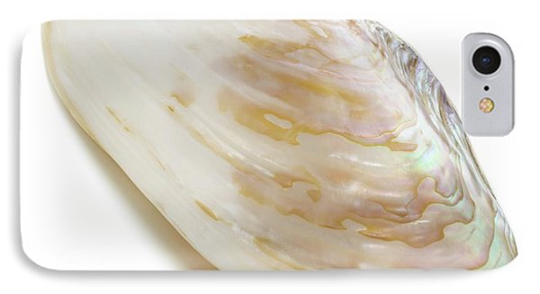 White Coloured Abalone Shell IPhone Case by Science Photo Library