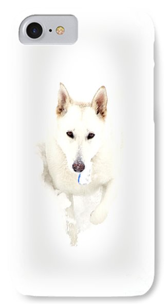 White German Shepherd In Snow Phone Case by Thomas R Fletcher
