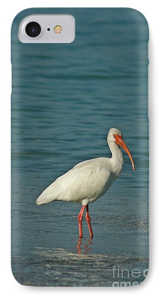 White Ibis IPhone Case by Cindi Ressler