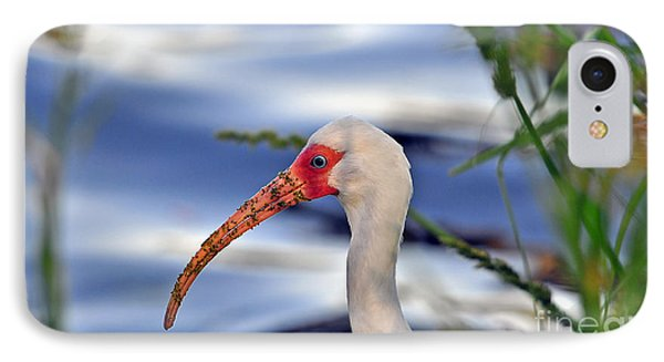 Intriguing Ibis IPhone 7 Case by Al Powell Photography USA