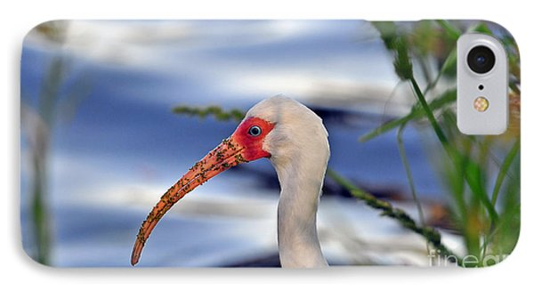 Intriguing Ibis IPhone Case by Al Powell Photography USA