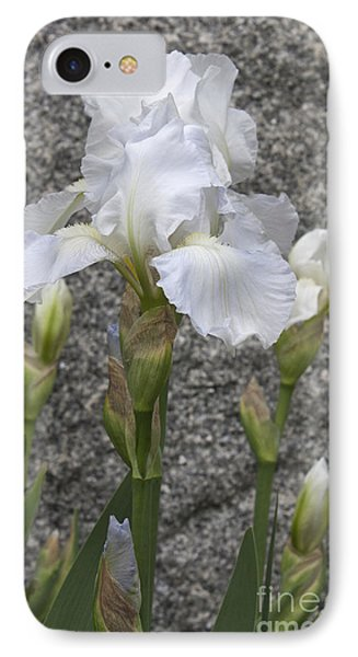 White Iris In Yorktown IPhone Case by Teresa Mucha