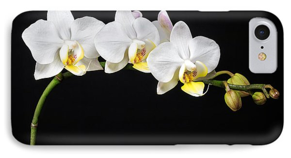 White Orchids IPhone 7 Case by Adam Romanowicz