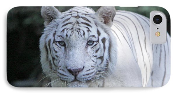 White Tiger Face Phone Case by Shoal Hollingsworth