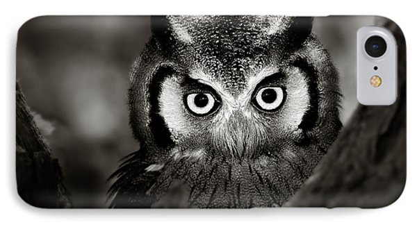 Whitefaced Owl IPhone Case by Johan Swanepoel
