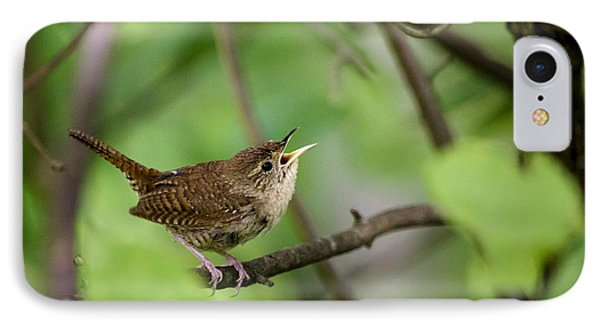 Wild Birds - House Wren IPhone Case by Christina Rollo