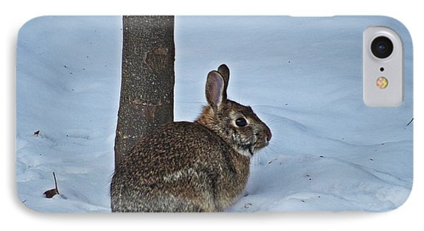 Wild Bunny IPhone Case by MTBobbins Photography