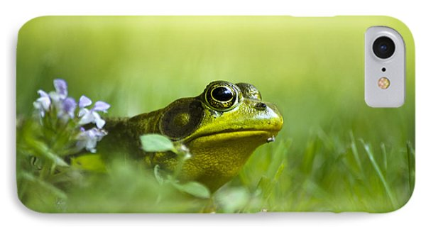 Wild Green Frog Phone Case by Christina Rollo
