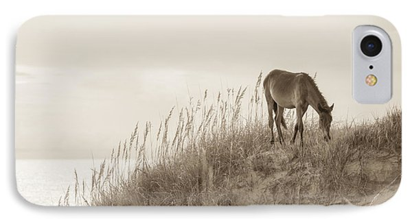 Wild Horse On The Outer Banks Phone Case by Diane Diederich