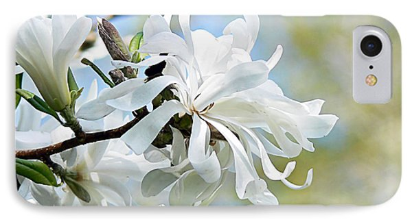 Wild Magnolia Blooms Phone Case by Pamela Patch