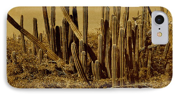 Wild West Ivb Phone Case by Anita Lewis