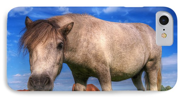 Wild Young Horse On The Field Phone Case by Michal Bednarek