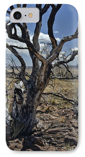 Wildfire Scarred Mesquite Tree Skeleton IPhone Case by Allen Sheffield