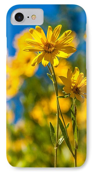 Wildflowers Standing Out IPhone Case by Chad Dutson