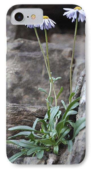 Wildflowers4 IPhone Case by Aaron Spong