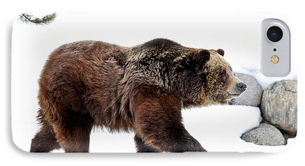 Winter Bear Walk IPhone Case by Athena Mckinzie