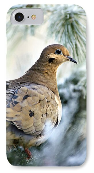 Winter Bird Mourning Dove Phone Case by Christina Rollo