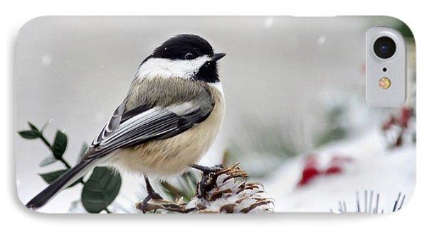 Winter Chickadee IPhone Case by Christina Rollo