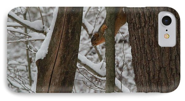 Winter Squirrel IPhone 7 Case by Dan Sproul