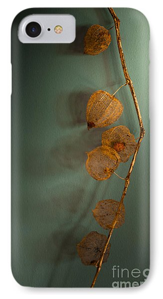 Winter Treasures IPhone Case by Jan Bickerton