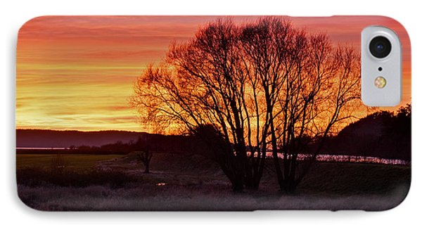 Winter Tree With Red Sky Phone Case by Valerie Garner