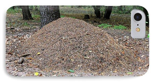 Wood Ant Nest IPhone Case by Bildagentur-online/mcphoto-schulz
