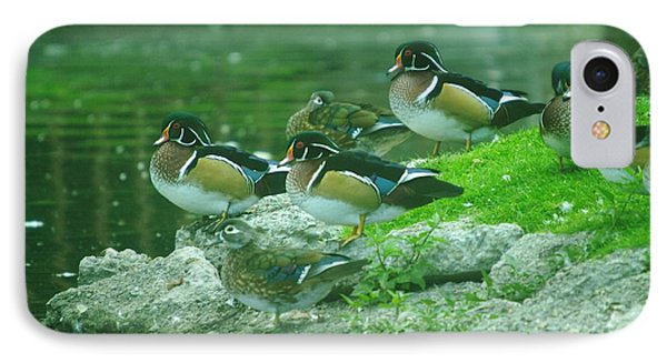 Wood Ducks Hanging Out Phone Case by Jeff Swan