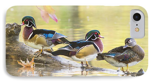 Wood-ducks Panorama IPhone Case by Mircea Costina Photography