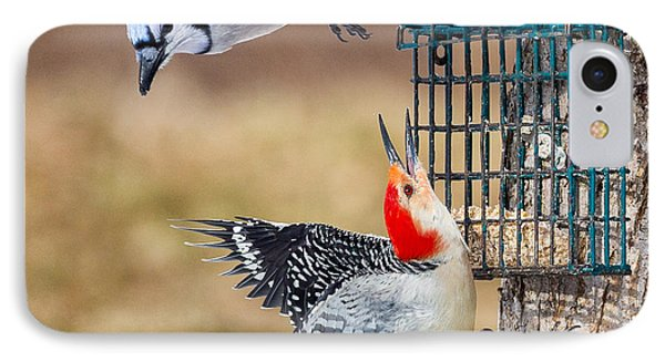 Woodpeckers And Blue Jays Square IPhone Case by Bill Wakeley