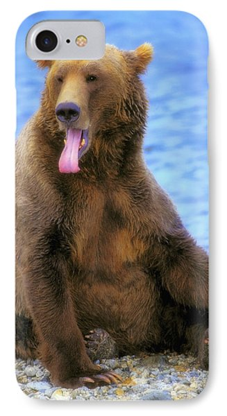 Yawning Grizzly Bear Sitting By Waters Phone Case by Thomas Kitchin & Victoria Hurst