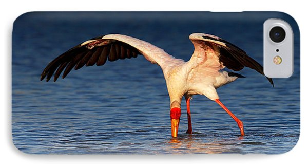 Yellow-billed Stork Hunting For Food IPhone 7 Case by Johan Swanepoel
