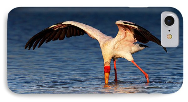 Yellow-billed Stork Hunting For Food IPhone Case by Johan Swanepoel