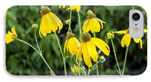 Yellow Cone Flowers Rudbeckia Phone Case by Rich Franco