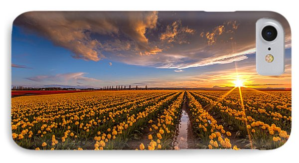 Yellow Fields And Sunset Skies IPhone Case by Mike Reid