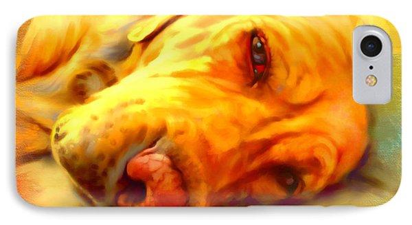 Yellow Labrador Portrait Phone Case by Iain McDonald